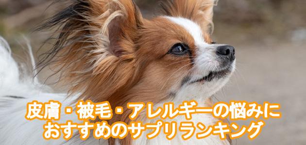 愛犬の皮膚・被毛・アレルギーの悩みにおすすめのサプリランキング