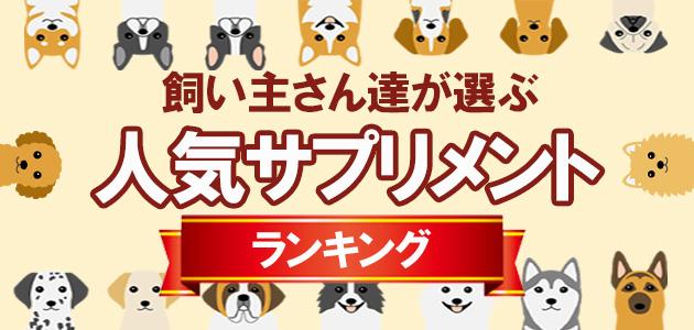 愛犬の健康をサポート!人気サプリランキング